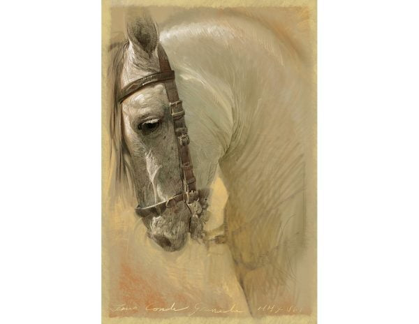 Obra digital de un caballo blanco
