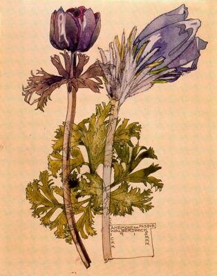 Arte floral para blog milartienda.com